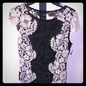 NEW Lace Tahari Dress